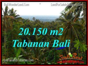 TANAH MURAH  di TABANAN BALI DIJUAL 201.5 Are View Laut dan Gunung