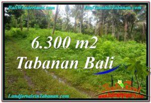 JUAL MURAH TANAH di TABANAN BALI 63 Are View kebun