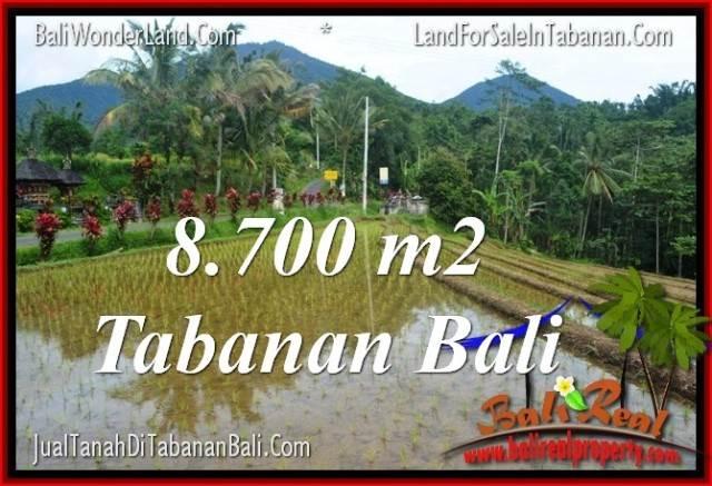 JUAL TANAH MURAH di TABANAN Untuk INVESTASI TJTB316
