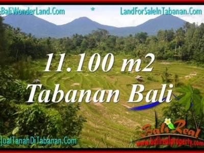 TANAH di TABANAN BALI DIJUAL 11,100 m2 di Tabanan Penebel