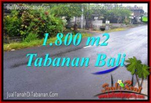 TANAH MURAH DIJUAL di TABANAN BALI 1,800 m2 di Tabanan Kota