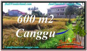 TANAH DIJUAL di CANGGU 600 m2  View sawah lingkungan villa