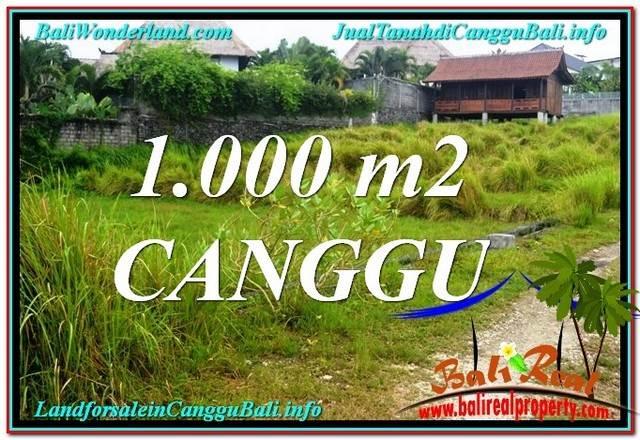 TANAH MURAH di CANGGU JUAL 1,000 m2  View sawah, sungai, laut