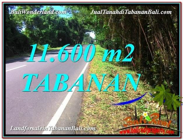 TANAH MURAH JUAL di TABANAN BALI 11,600 m2  View laut dan Lingkungan Villa