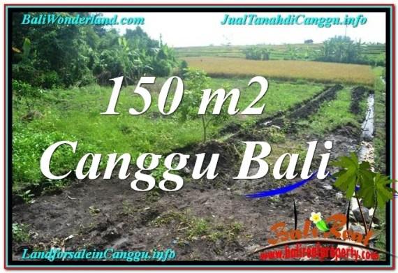 INVESTASI PROPERTY, JUAL MURAH TANAH di CANGGU BALI TJCG213