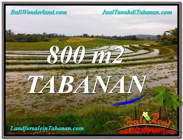 INVESTASI PROPERTY, TANAH MURAH di TABANAN TJTB324