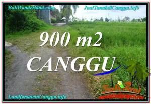 TANAH MURAH di CANGGU 900 m2  View sawah lingkungan villa