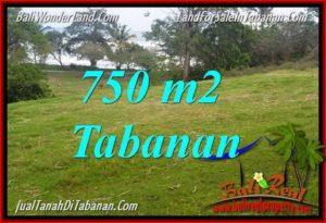 TANAH di TABANAN DIJUAL MURAH 7.5 Are di Tabanan Selemadeg