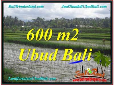 TANAH di UBUD BALI DIJUAL MURAH TJUB607