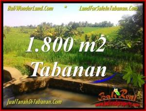 DIJUAL MURAH TANAH di TABANAN 18 Are di Tabanan Selemadeg