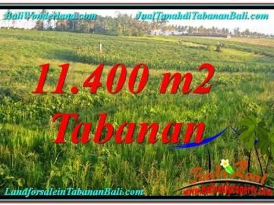 TANAH MURAH di TABANAN JUAL 114 Are View Laut, Gunung dan sawah