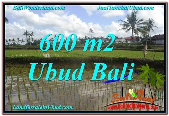 TANAH di UBUD JUAL MURAH 600 m2  View sawah