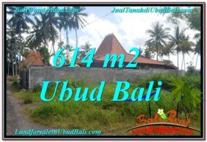 TANAH MURAH di UBUD BALI Untuk INVESTASI TJUB622