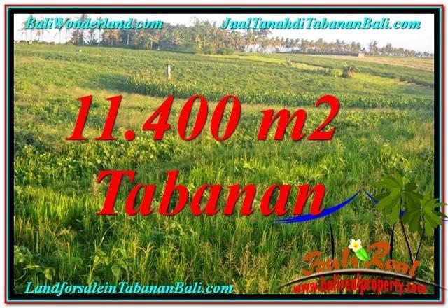 TANAH MURAH di TABANAN JUAL 11,400 m2  View Laut, Gunung dan sawah