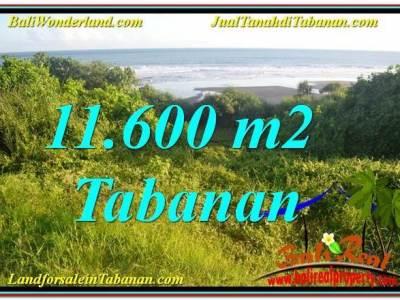 TANAH DIJUAL di TABANAN BALI Untuk INVESTASI TJTB340