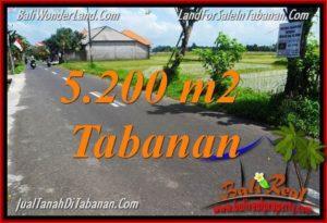 TANAH di TABANAN DIJUAL MURAH 5,200 m2 di Tabanan Kediri