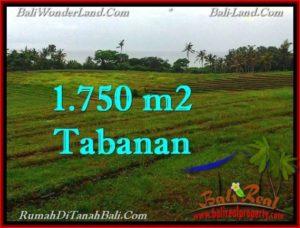 DIJUAL TANAH di TABANAN Untuk INVESTASI TJTB262