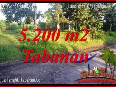 TANAH MURAH di TABANAN DIJUAL Untuk INVESTASI TJTB334