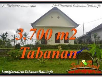 TANAH MURAH di TABANAN BALI DIJUAL 37 Are View Kebun