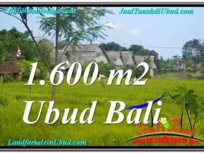 JUAL TANAH di UBUD BALI 16 Are di Sentral / Ubud Center