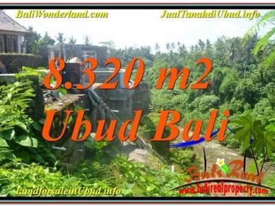 TANAH MURAH JUAL UBUD 83 Are View Sungai, Link. Villa