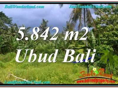 TANAH di UBUD DIJUAL 5,842 m2 di Sentral / Ubud Center