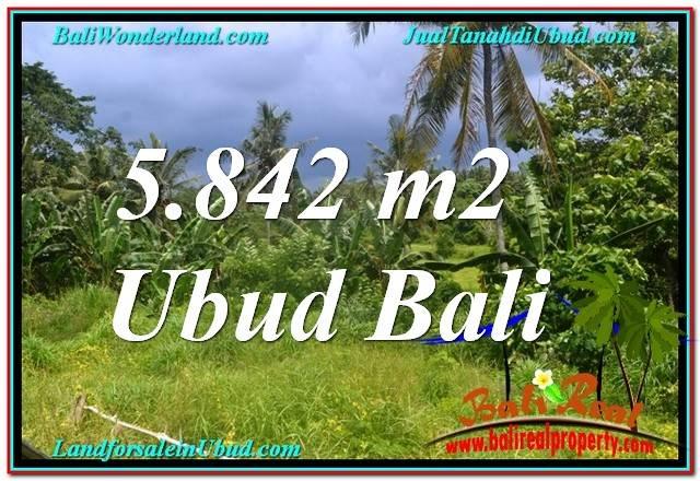 JUAL TANAH MURAH di UBUD BALI 5,842 m2  View Tebing dan Sungai, Link. Villa