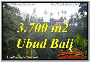 TANAH MURAH di UBUD BALI Untuk INVESTASI TJUB640