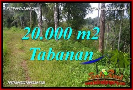 TANAH DIJUAL di TABANAN BALI 20,000 m2 View kebun