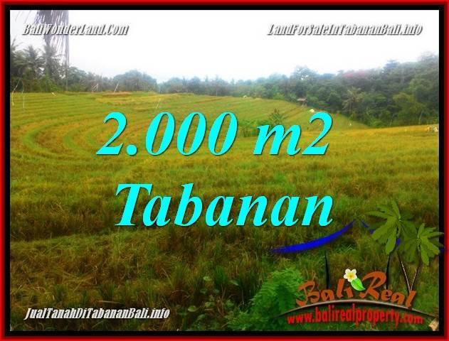 DIJUAL TANAH di TABANAN Untuk INVESTASI TJTB356