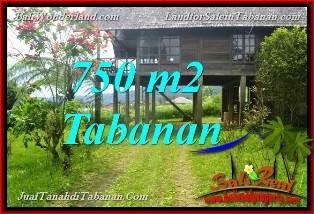TANAH MURAH JUAL di TABANAN BALI 750 m2 view Kebun dan Gunung