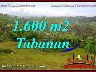 JUAL TANAH DI TABANAN BALI TJTB378