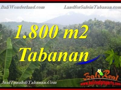 JUAL TANAH MURAH di TABANAN BALI 18 Are View Gunung