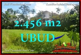 TANAH DIJUAL MURAH DI UBUD BALI 2,456 m2  View tebing link Villa