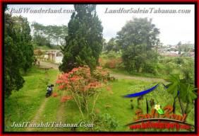 TANAH MURAH DIJUAL di TABANAN BALI 7.5 Are di Tabanan Bedugul