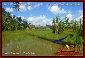 TANAH di UBUD BALI DIJUAL MURAH 4,900 m2 di Ubud Pejeng