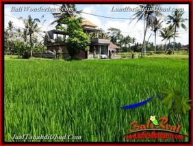 TANAH di UBUD DIJUAL 3,900 m2 di Ubud Pejeng