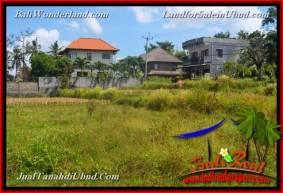 TANAH DIJUAL MURAH di UBUD Untuk INVESTASI TJUB664
