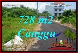 TANAH di CANGGU BALI DIJUAL 728 m2  VIEW SAWAH, LINGKUNGAN VILLA