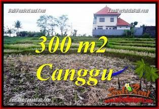 DIJUAL TANAH MURAH di CANGGU BALI Untuk INVESTASI TJCG230