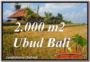 TANAH MURAH di UBUD BALI DIJUAL 2,000 m2 VIEW SAWAH, LINGKUNGAN VILLA