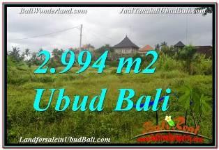 TANAH di UBUD DIJUAL MURAH 2,994 m2 VIEW SAWAH DAN VILLA