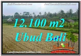 JUAL TANAH di UBUD BALI 12,100 m2 VIEW SUNGAI DAN TEBING