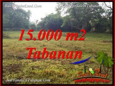 JUAL TANAH MURAH di TABANAN BALI 15,000 m2 VIEW KEBUN DAN SUNGAI