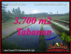 TANAH di TABANAN JUAL 3,700 m2 VIEW LAUT DAN SAWAH