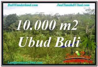 TANAH MURAH  di UBUD BALI DIJUAL 105 Are VIEW SUNGAI DAN TEBING