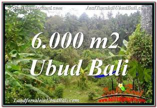 TANAH di UBUD BALI DIJUAL MURAH 60 Are VIEW SUNGAI DAN TEBING