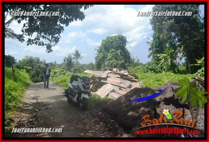 JUAL Murah Tanah di Ubud 4 Are View sungai dan sawah