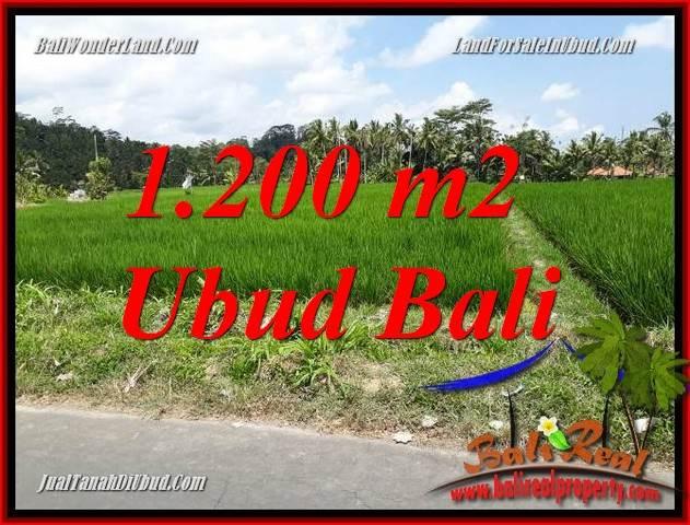 Investasi Properti, Dijual Tanah Murah di Ubud Bali TJUB694