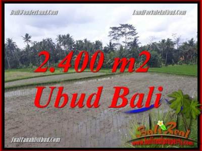 Tanah Dijual di Ubud Bali 2,400 m2 di Ubud Pejeng